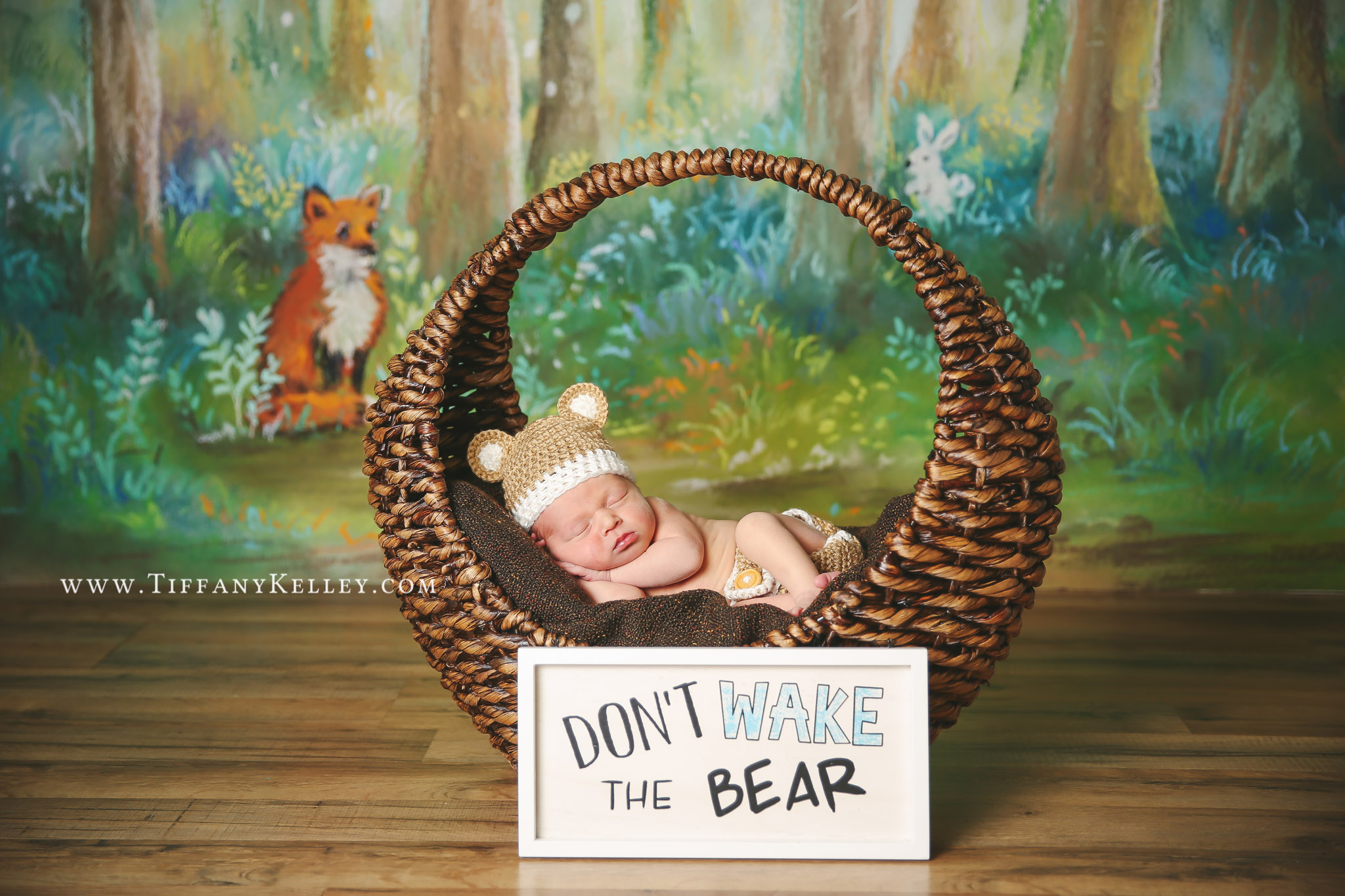 branson-springfield-missouri-newborn-photographer-tiffany-kelley-photography-01