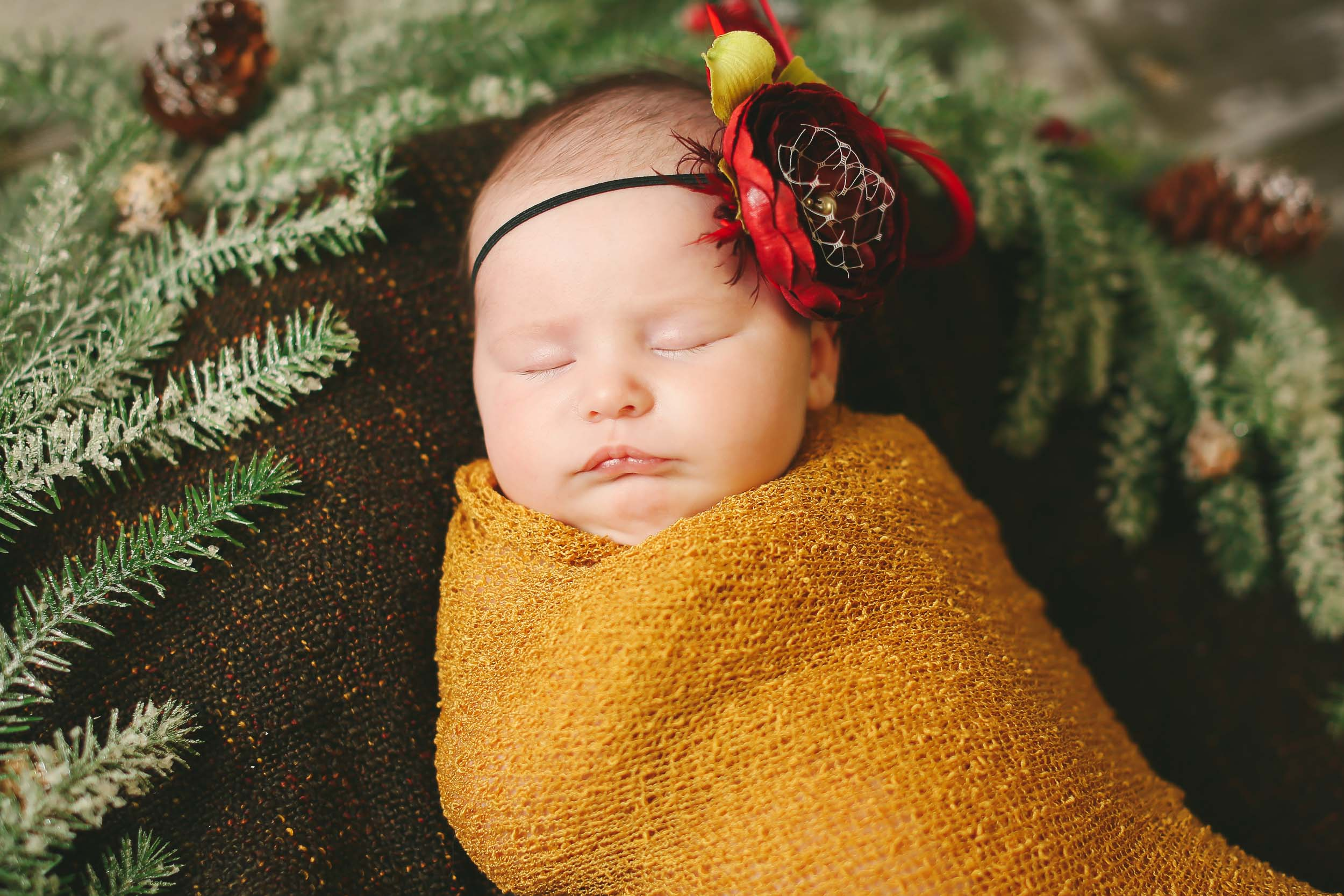 Branson and Springfield MO Newborn Photographer Maternity Photographer Tiffany Kelley Photography-7.jpg