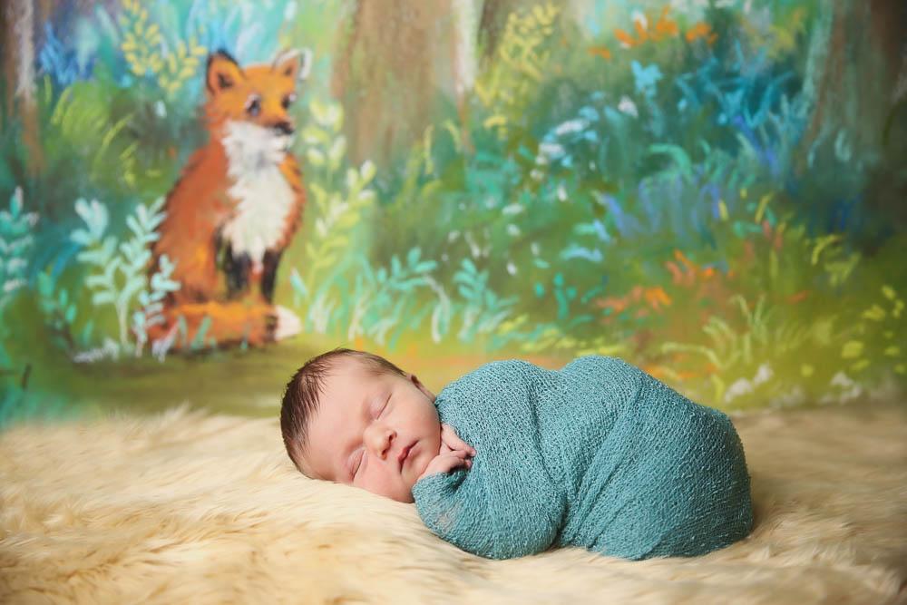 Branson and Springfield MO Newborn Photographer Tiffany Kelley Photography Portfolio 009.jpg